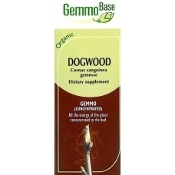 Dogwood [Cornouiller] - 15ml