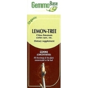 Lemon Tree (bark) - 50ml
