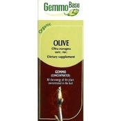 Olive - young shoots [Olivier] - 50ml
